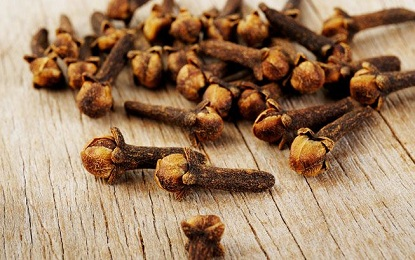 Cloves Can Easily Kills these 5 Diseases from the Root